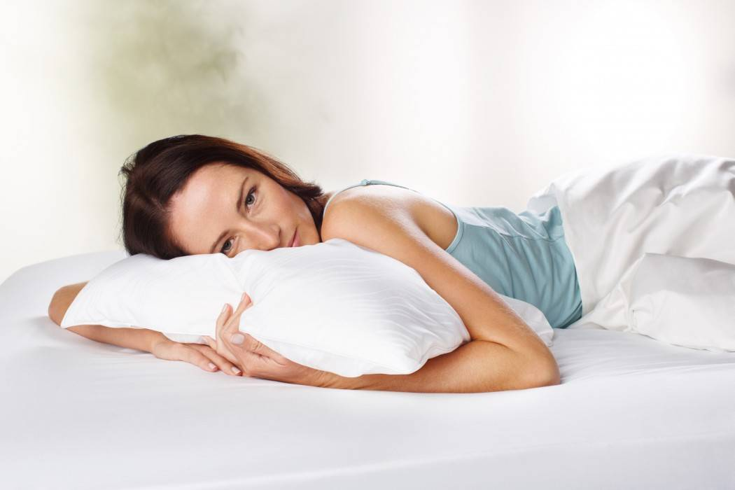 TEMPUR Traditional Pillow with Model