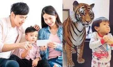 Google推出AR動物合照功能 親子抗疫在家新玩意