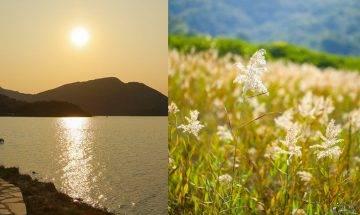 粉嶺鹿頸至谷埔行山路線|BB級輕鬆行山徑-沿途享受金黃蘆葦田/日落海景/食茶粿