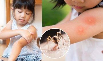 5款蚊怕水推薦:含消委會推介驅蚊成份及安全使用方法