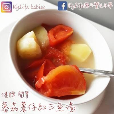 家常菜蕃茄薯仔紅衫魚湯-簡單湯水食譜 健脾開胃