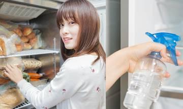 洗雪櫃5步曲去漬兼除臭+教你冷藏食物常見錯誤