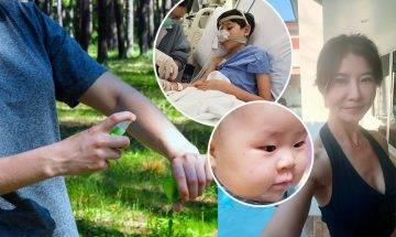 台灣女星岳庭幼子被蚊叮蟲咬引發心肌炎  防蚊攻略你要知