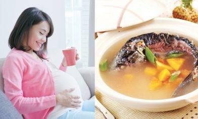 催乳湯水6款推介 產後催乳解決方法 坐月湯水助增乳汁  |母乳教室