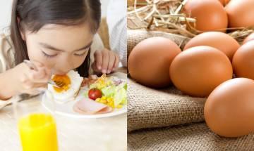 雞蛋高膽固醇是誤解?日本研究拆解雞蛋7大迷思|附早餐食雞蛋的6大好處