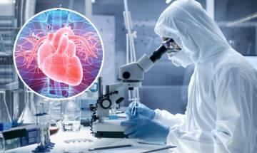 新型冠狀病毒或致心臟受損 德國研究指78%康復者心臟有結構改變
