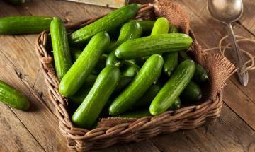 青瓜營養|可減肥抗癌? 營養師分析5大青瓜營養好處及食用禁忌【聰明飲食】