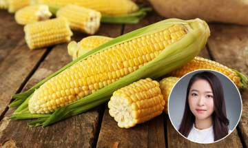 粟米營養好處|營養師拆解5大粟米營養好處+3大粟米食用問題【聰明飲食】