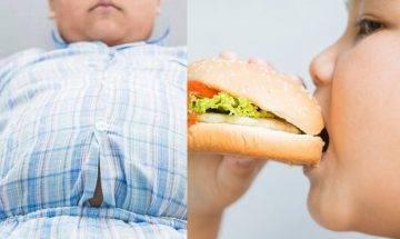 消委會飲食諮詢|服務價錢相差4倍 倡留意營養師專業資格(持續更新)