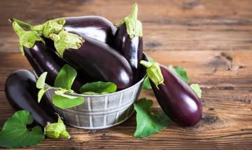 茄子功效|助抗癌降膽固醇-營養師解構4大茄子功效+食用禁忌【聰明飲食】