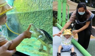 屯門公園親親小動物 爬蟲館+特色滑梯+小山丘+彈床|親子戶外好去處