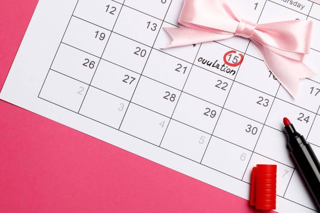 月經周期長度為28天的女士,大部份排卵會在第14天發生。