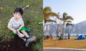 草地出現多個大窿令途人跌倒 小童狂挖泥無人阻止 網民憂孩子及老人安全