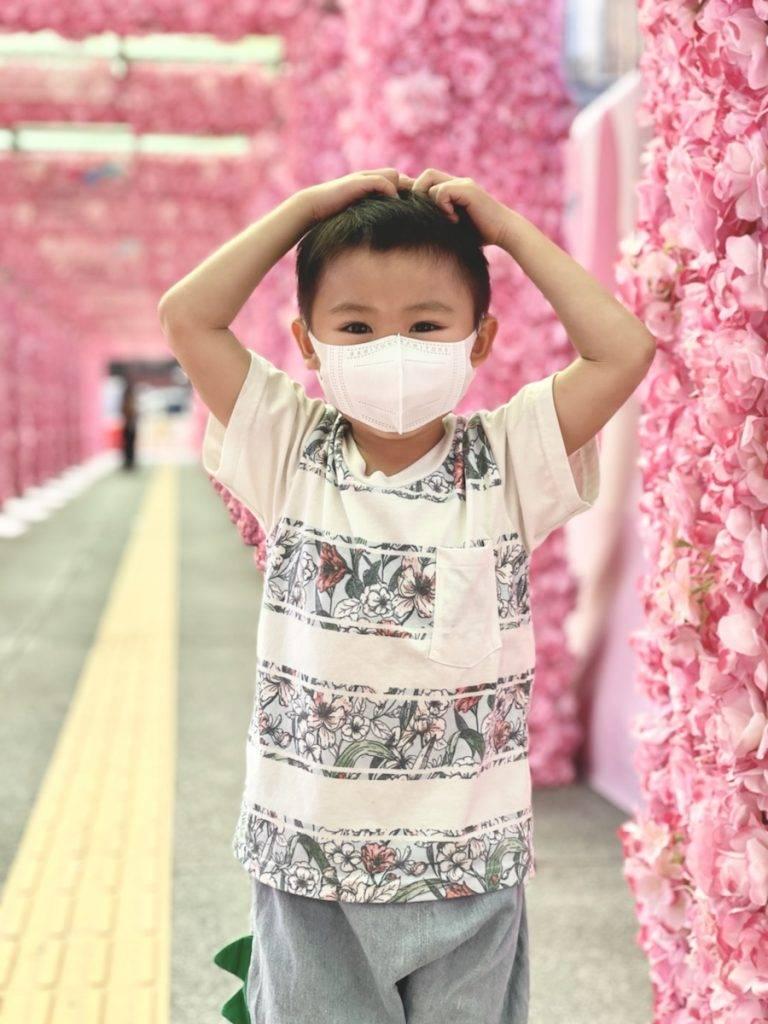 行遠少少去到會展方向,仲有夢幻粉紅花隧道及玫瑰花走廊