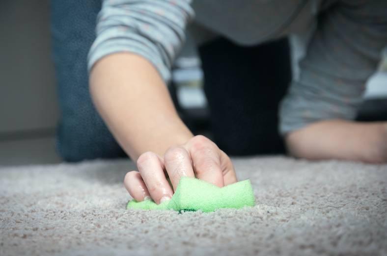 地毯清潔方法2. 去除水性污漬(如醬汁飲料)