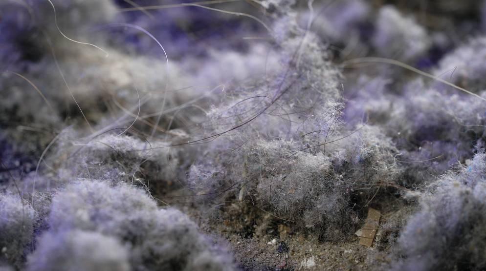 地毯清潔方法1. 用膠手套去除毛髮