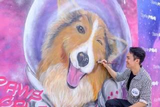 本地著名動物藝術畫家LeonLollipop以藝人洪永城的牧羊犬Coco為主角,畫出2.4米高的可愛「太空毛孩」打卡牆,成為赤柱的全新打卡地標。