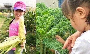 歐羅有機農場$80當假日農夫 學務農+摘時令蔬果+有機特飲|親子好去處