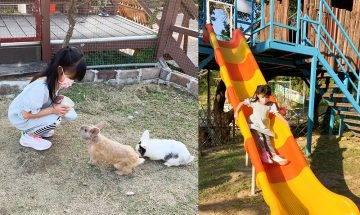 元朗小白兔音樂農莊 餵兔+樹屋滑梯+繩網陣+露營 親子好去處