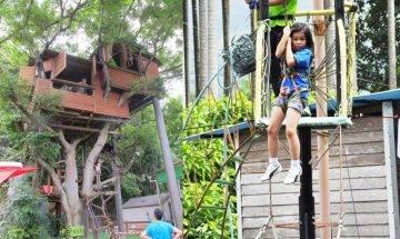 大埔林村樹屋田莊最低$120 樹屋歷奇+高台飛索+攀樹探索|親子好去處