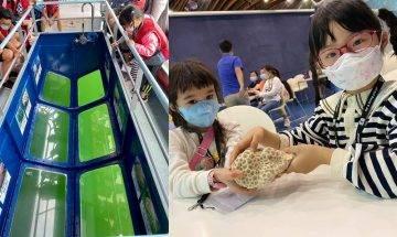 海下灣生態導賞團$150位 坐玻璃船探索逾60種石珊瑚世界|親子好去處