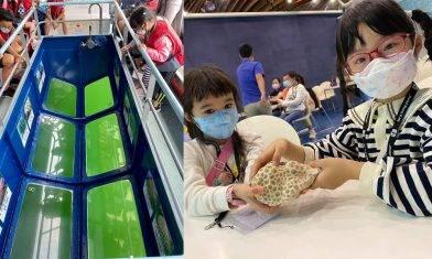 海下灣生態導賞團$150位 玻璃底船探索水底珊瑚世界|親子好去處