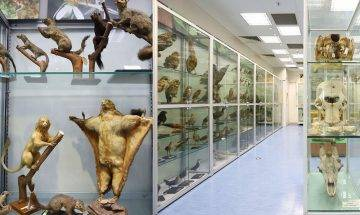 香港生物多樣性博物館開幕!近1萬個珍貴標本 免費預約參觀|室內好去處