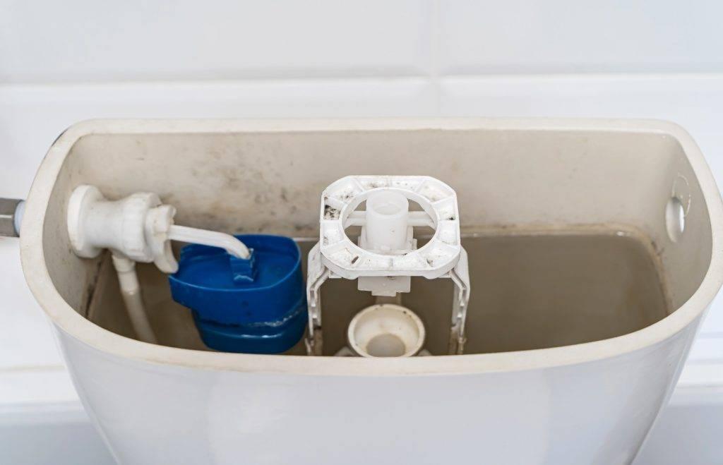 有網友將過期番梘放進廁所水箱清潔,結果反令水箱滿佈霉菌,發出惡臭。(Shutterstock)