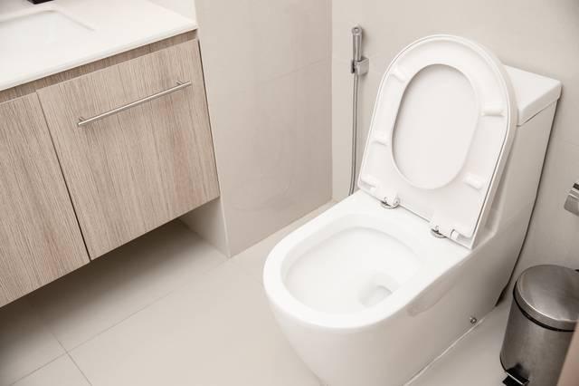 連體式座廁一體成型無夾縫;分體式座廁價格則較相宜。