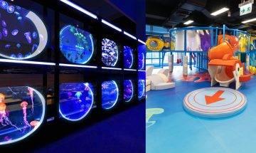 浩海立方 • 探游館全港首個海洋探索體驗館 登陸荃灣 佔地1萬呎