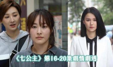 七公主|16-20集劇情劇透:吳子冲、黃翠如姊弟戀  陳瀅對馬海倫大獻殷勤