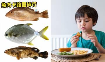 吃魚5大好處+16種魚類熱量排行|食魚會變聰明!選對魚類避開重金屬