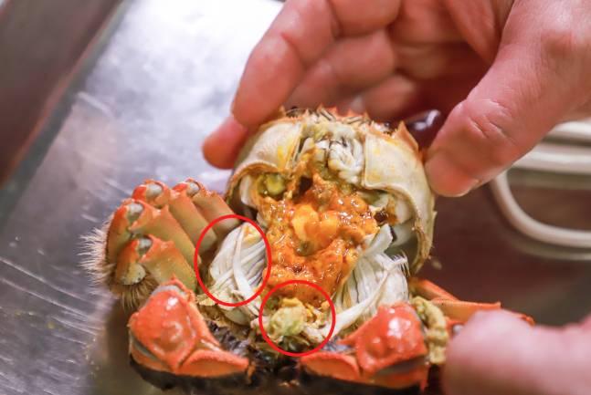 蟹肺及蟹心是蟹寒性尤其明顯的部位,吃大閘蟹要移除(圖片來源:shutterstock)