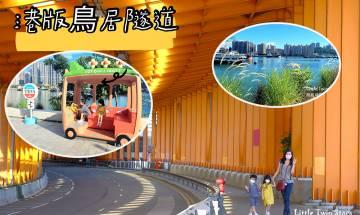 荃灣西海濱長廊|港版鳥居隧道+海傍芒草+貓咪海濱 偽日本之旅免費打卡