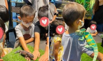 觀塘小爬行星 親自餵食/零距離接觸/認識爬蟲動物特性 二人同行95折優惠